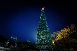 Ancient Olympia-Christmas 13